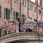 Venice deliveries by Vicki Moritz