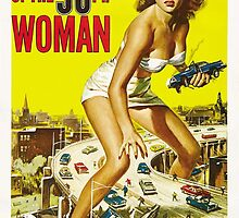 Attack Of The 50FT Woman by andrewshunt
