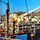 Buoys Will Be Buoys by wallarooimages
