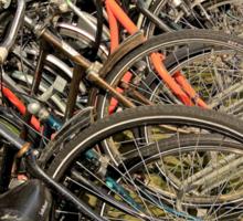 Line of Bikes Sticker
