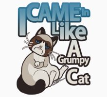 I Came In Like A Grumpy Cat by zerojigoku
