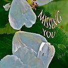 Missing you by Carolyn Clark