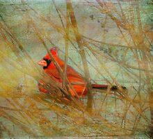 My Heart Sings by Susan Werby