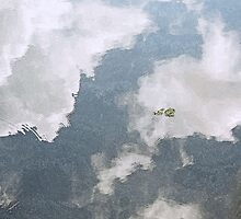 Floating on Air  by John  Kapusta