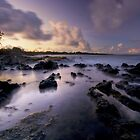 Highway to Hana - Maui by Michael Treloar