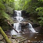 Split Summer Flow Over Tuscarora's Ledge by Gene Walls