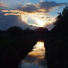 Ham Wall Ditch Sun Set by Yampimon