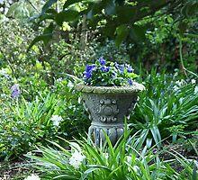 Lucy's garden of hidden delights by Maggie Hegarty