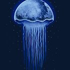 Moon Jellyfish by Harry Fitriansyah