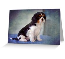 Puppy Perfect II Greeting Card