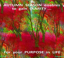 GAIN CLARITY OF YOUR PURPOSE by Lorraine Wright