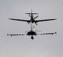 Spitfire and Typhoon by J Biggadike
