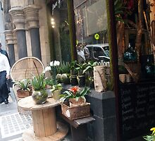 The Flower Shop in Flinders Lane, Melbourne Vic Australia by Margaret Morgan (Watkins)
