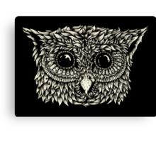 Staring owl Canvas Print