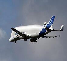 AirBus Beluga Transporter Plane by AnnDixon