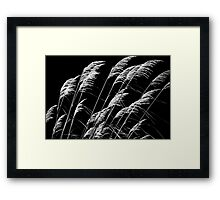 Who Has Seen The Wind Framed Print
