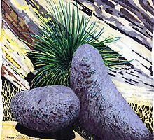 BIG BOLDER BOULDERS~A calendar of ROCKS by James Lewis Hamilton