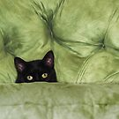 Green-Eyed Girl On Papason Chair by Laurie Minor