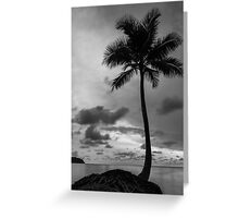 Palm tree silhouette in black and white Greeting Card