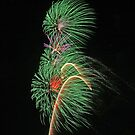 Fireworks by David DeWitt