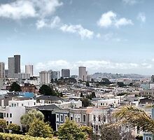 San Francisco Panorama by Dmitry Shuster