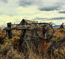 Old Barn Summer Lake by Charles & Patricia   Harkins ~ Picture Oregon
