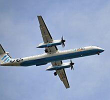 Flying In A Sea Of Blue .............. by lynn carter