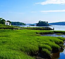 Maine Estuary by Gary Benson