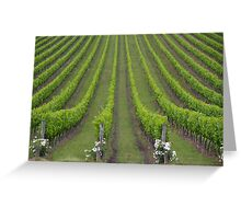White Christmas, Or Red? (Depends On The Colour Of Your Wine!) Greeting Card