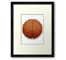 Cerebral Hyperstereogram Framed Print