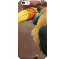 The beak makes the bird iPhone Case/Skin