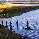 Hayling Oyster Beds by lezvee