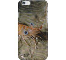 Prawn Portrait iPhone Case/Skin