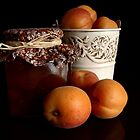 Apricot Jam Still Life by Martie Venter