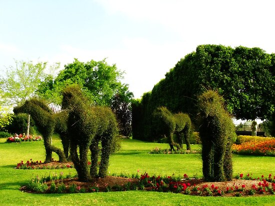 Topiary Horses by Marilyn Harris