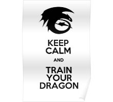 Keep calm and train your dragon Poster