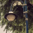 Malaysian Street Lamp by Elaine Teague