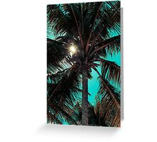 Palm tree with Retro summer filter effect Greeting Card