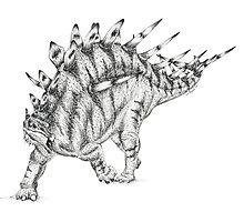 Kentrosaurus Pen & Ink Drawing by LonettaAvelar