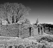 Abandoned Castilla, CO by Gary Benson