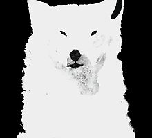 THE RUFFLED BEAR by hyqee
