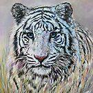 White tiger 2,500$ by Marina Terkulova -Tesch