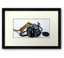 The Kodak Guy Framed Print