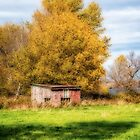 Old Shed - orton-ized by PhotosByHealy
