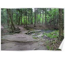 Highland Trail Stone Walkway Poster