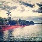 Indo Pacific Coastline by Rob Price