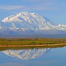 Mt McKinley and Reflection Lake, Denali N. P.,  Alaska USA by Margaret  Hyde