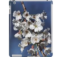Spring Dreams iPad Case/Skin