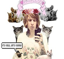 Alan Ashby; Ginger Cat Princess by GoodLuckAndBye