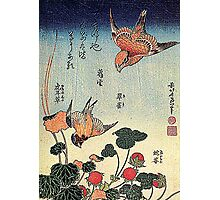 'Wild Strawberries and Birds' by Katsushika Hokusai (Reproduction)  Photographic Print